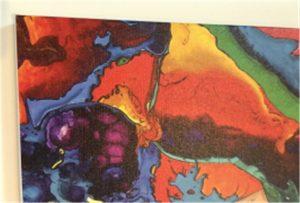Eșantion de tipărire canvas de WER-E2000UV