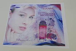 Flag Panier tipărit de imprimantă ecologică de 1,6m (5 picioare) WER-ES160 4