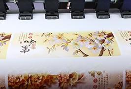 Vinil autoadeziv printezat de imprimanta ecologică WER-ES1802 de 1,8 m (6 picioare)